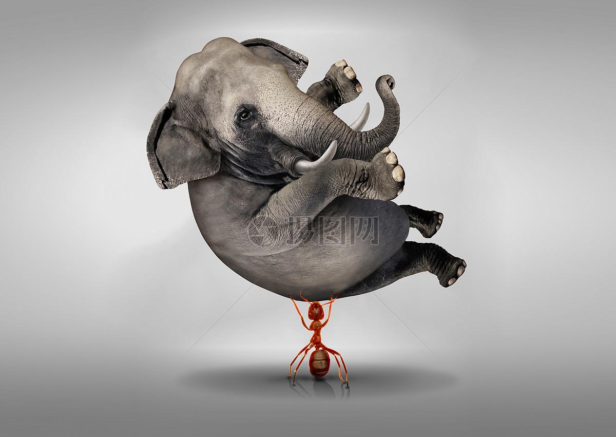 创意蚂蚁举起大象图片