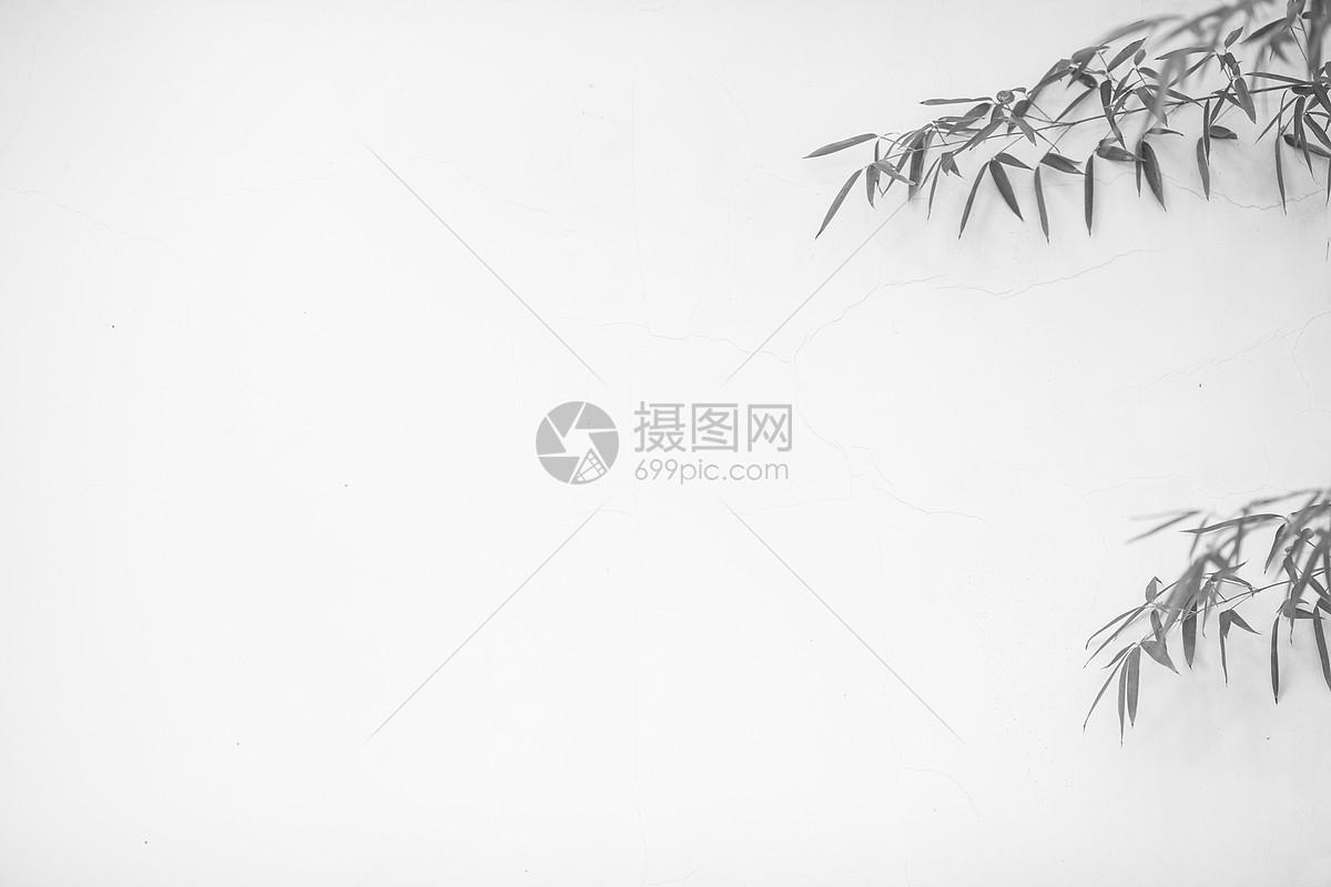举报 标签: 竹子竹叶竹林简约黑白水墨风水墨叶子中国风极简极简素材