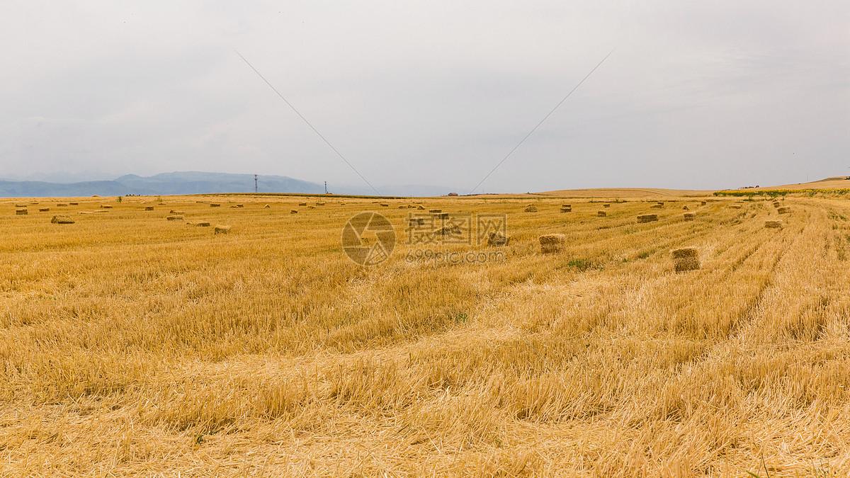 唯美图片 自然风景 秋天收割后的金黄色草垛jpg