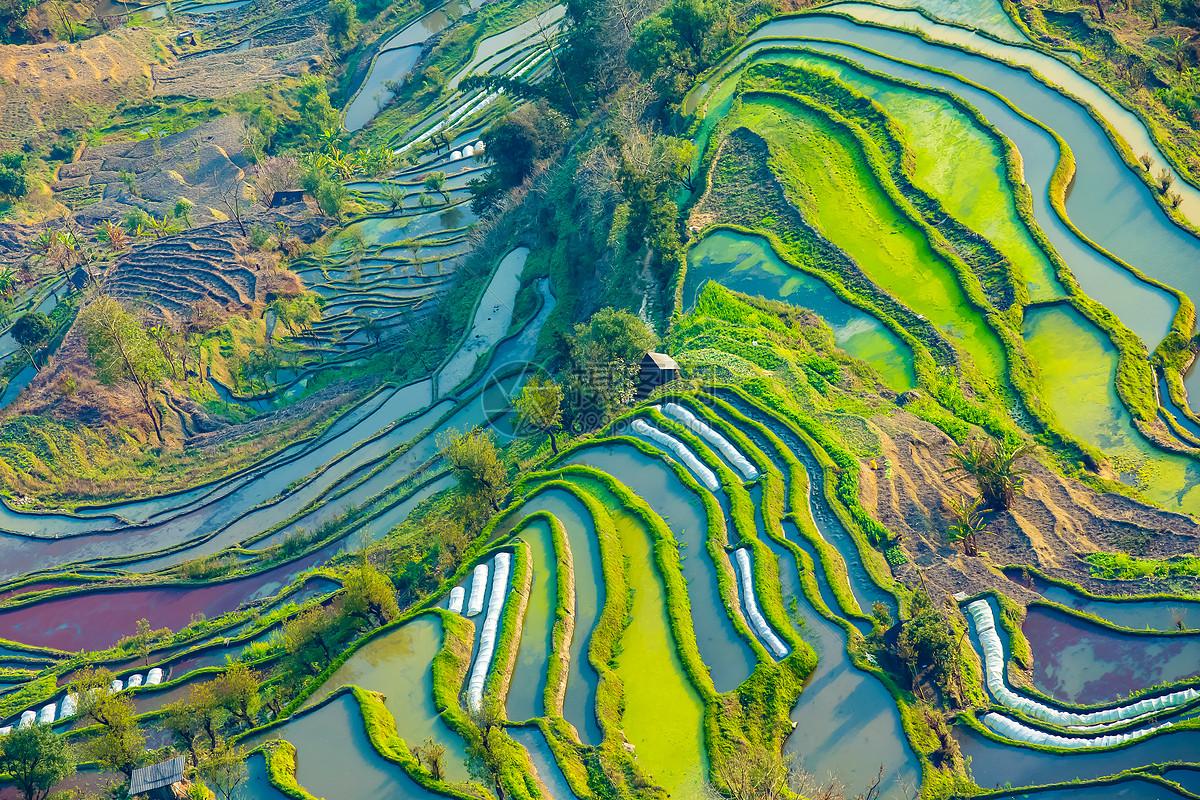 照片 自然风景 云南元阳梯田航拍鸟瞰图jpg  分享: qq好友 微信朋友