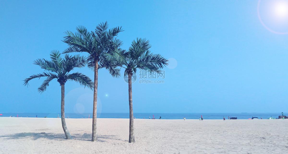 沙滩上的椰子树图片素材_免费下载_jpg图片格式_vrf