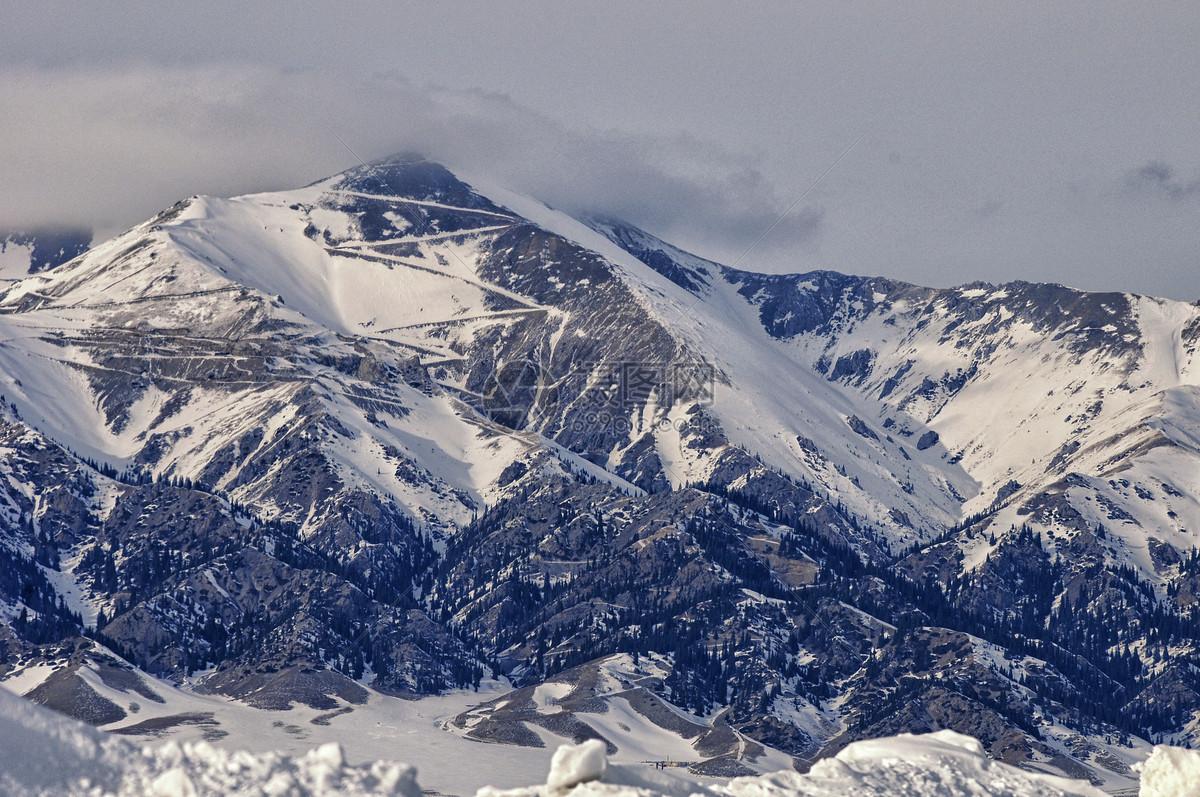 照片 自然风景 新疆雪山森林jpg  分享: qq好友 微信朋友圈 qq空间