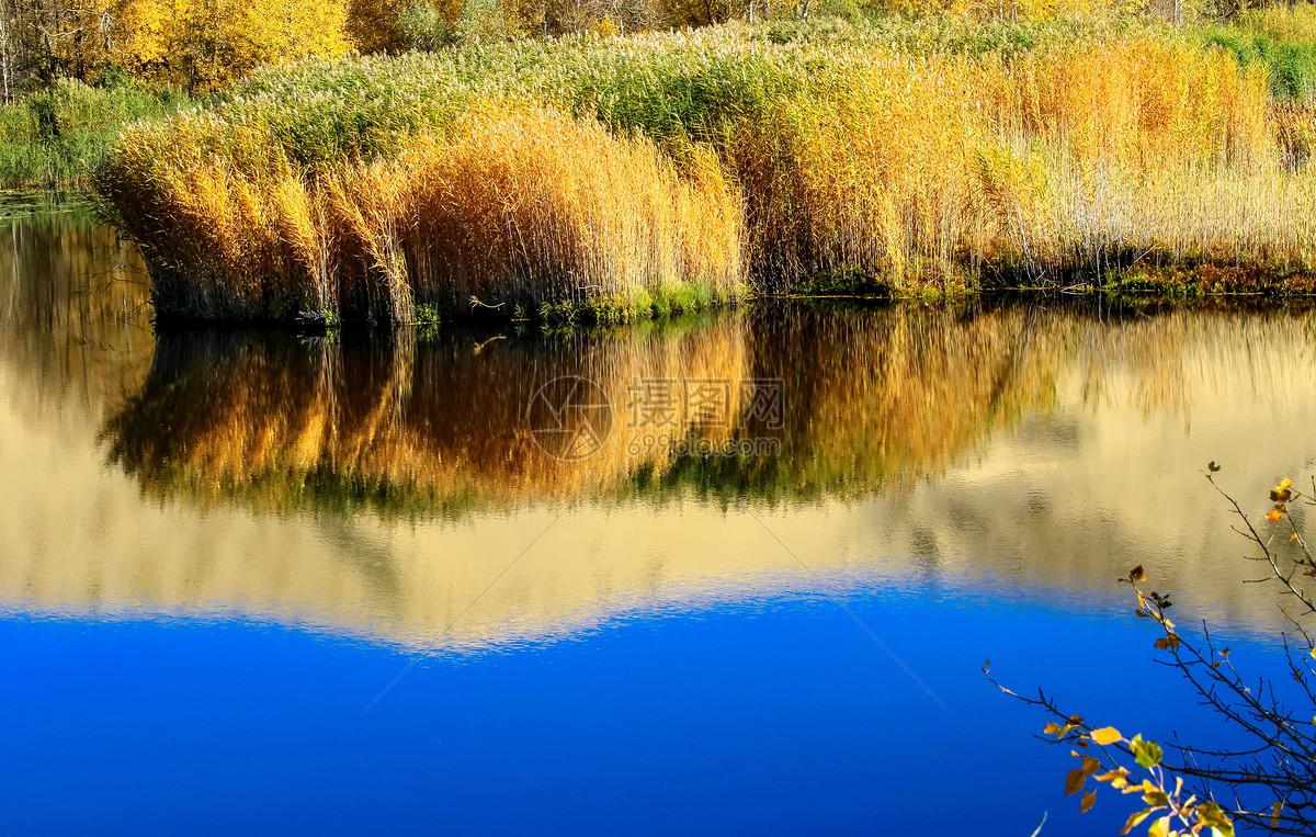 照片 自然风景 湖边秋色jpg