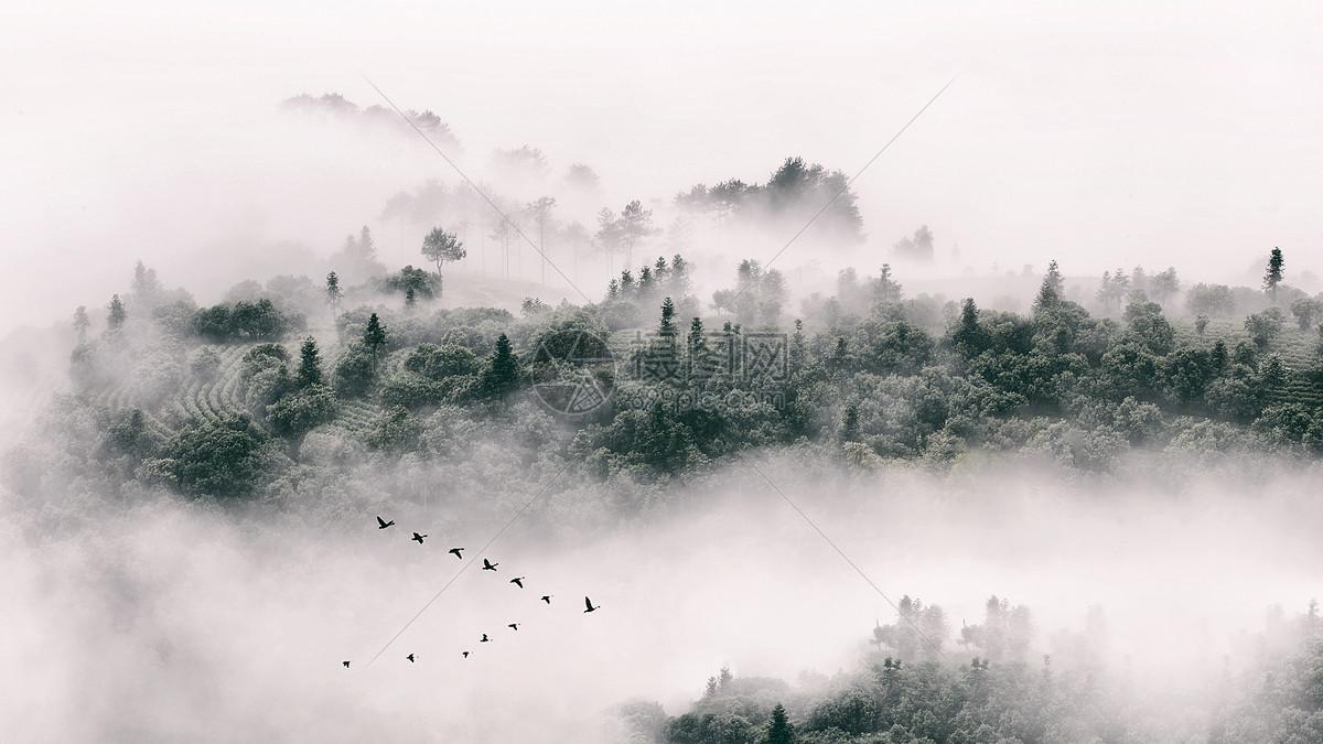风景背景大图  充满中国风的江南水乡雾气景色图片素材_免费下载_jpg
