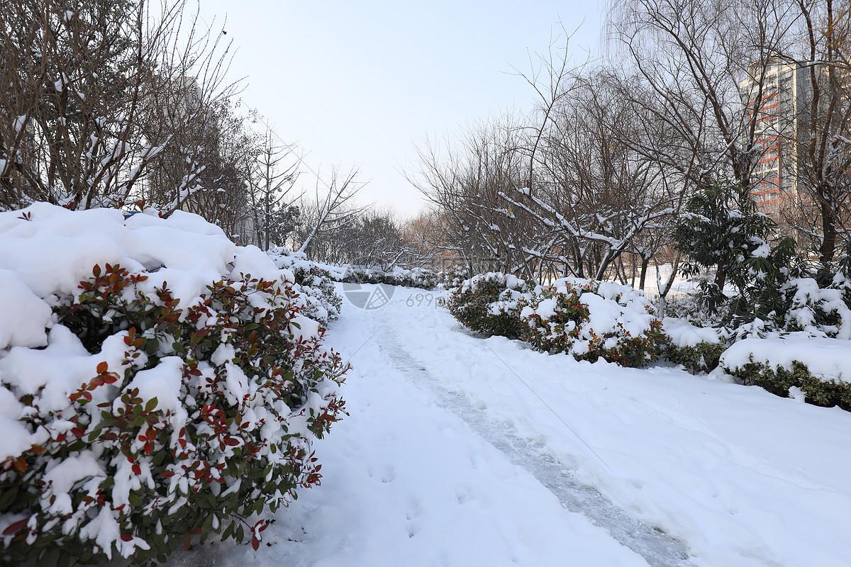 描写春天雪景的图画