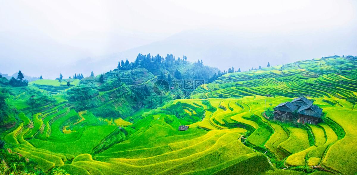 照片 自然风景 贵州加榜梯田jpg  分享: qq好友 微信朋友圈 qq空间
