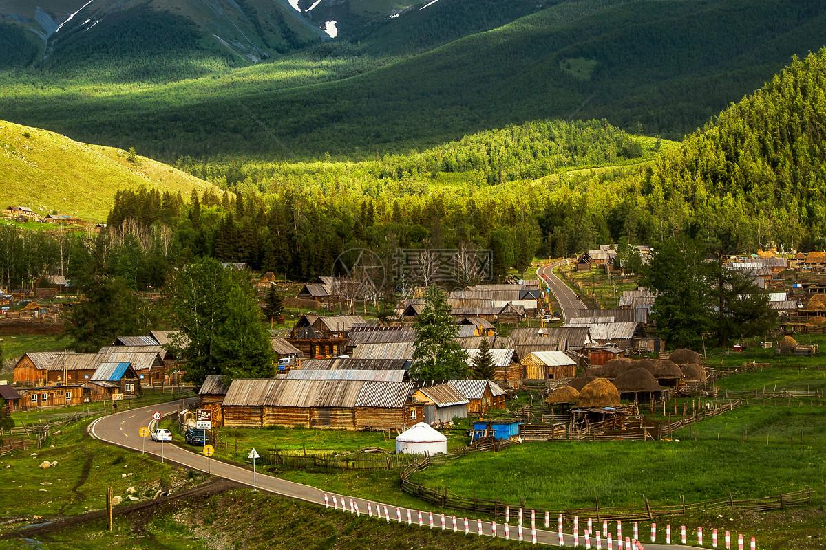 新疆白哈巴图片