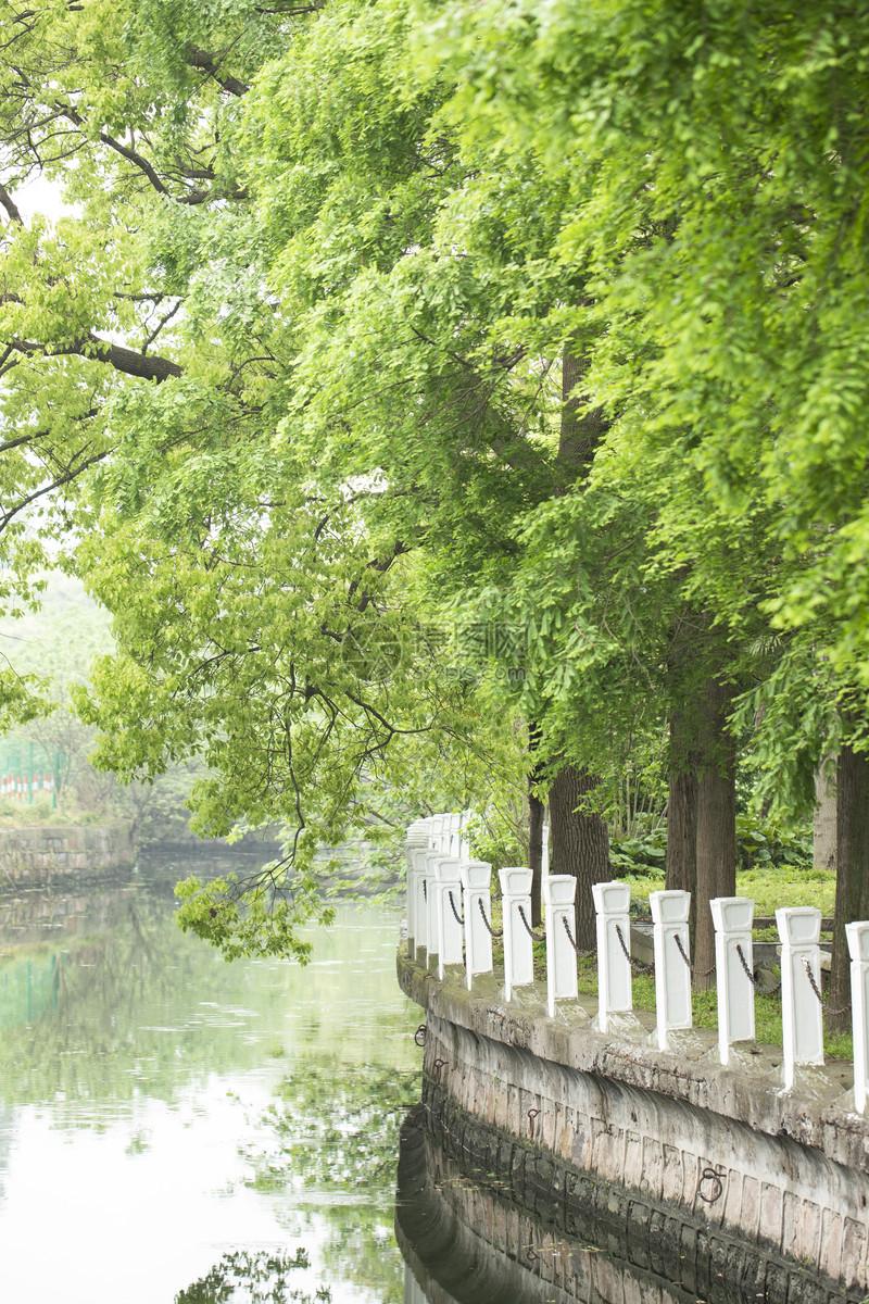 河边公园图片